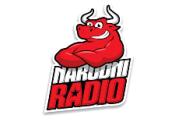 Narodni Radio BiH
