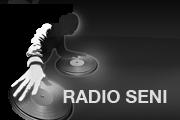 Radio Seni